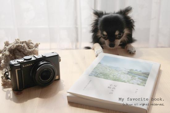写真生活手帖—素敵な世界の切り取り方