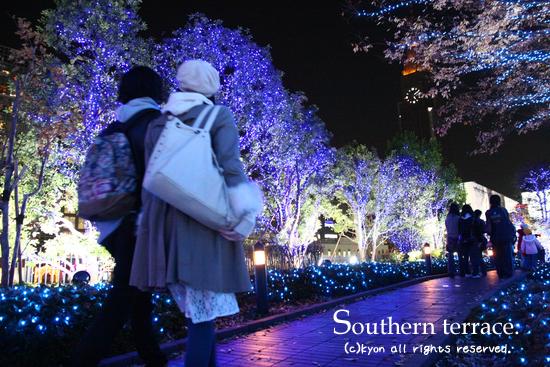 クリスマスイルミネーション@新宿サザンテラス