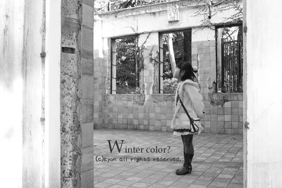 冬の色探し。