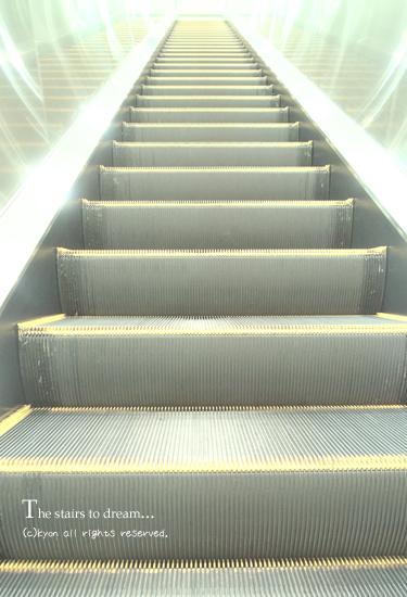 夢の階段・・・そして、皆様へのお願い。