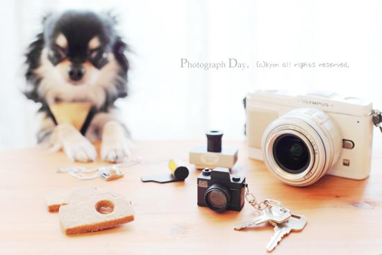 写真の日ですよ♪