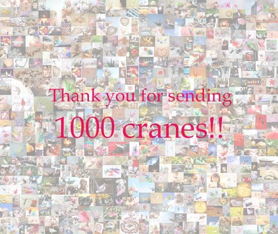 【御礼】おかげさまで1000ツル集まりました!ありがとう〜!!
