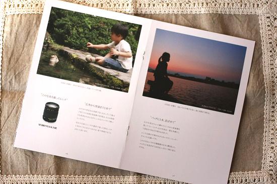 ダカフェ,日記,シグマ,SIGMA,レンズ,写真,撮影,デジタル,一眼レフ,デジイチ,カメラ,18-200mm F3.5-6.3 DC