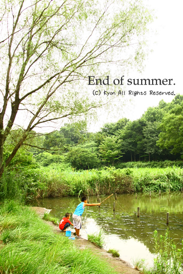 夏の終わりを探しに行ったら・・・